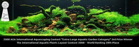 award winning aquascapes bubbles aquarium aquascapes 2008 aquascaping gallery