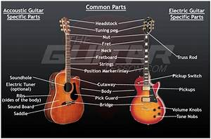 Acoustic Electric Guitar Parts Diagram