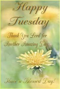 ImagesList.com: Happy Tuesday 5  Tuesday