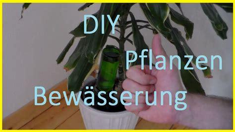 bewaesserungssystem fuer pflanzen selber bauen pflanzen im