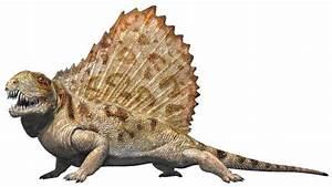 Dinosaur Classification Genesis Park