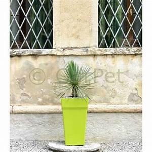 Pflanzkübel Mit Wasserspeicher : pflanzk bel mit wasserspeicher gro eckig hoch 65 80 cm ~ Frokenaadalensverden.com Haus und Dekorationen