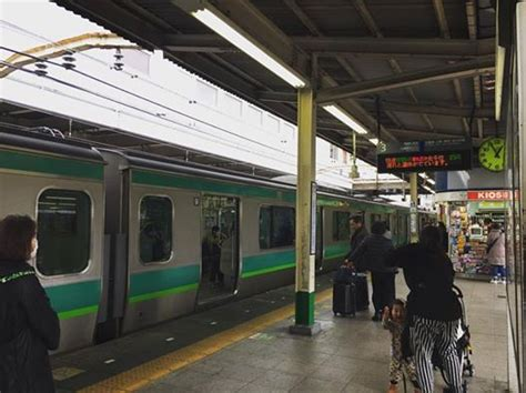 Telat Datang Bulan 40 Hari Musim Semi Musimnya Bunuh Diri Di Jepang Oleh Weedy
