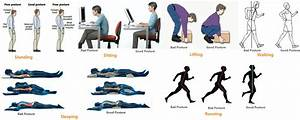 Lower left back pain 15 causes treatments and prevention for Best sleeping posture for lower back pain