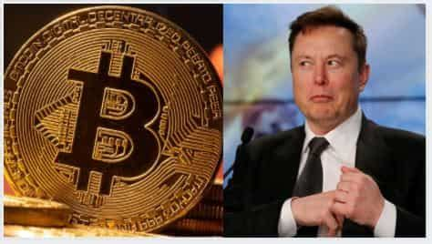 Cryptocurrency latest news today: Elon Musk vs Anonymous ...