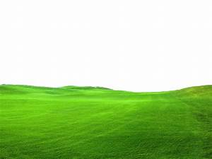 Grass png images download for Green carpet png