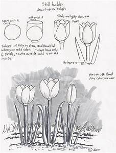 learn-to-sketch-classes-for-beginners-drawing-classes-for ...