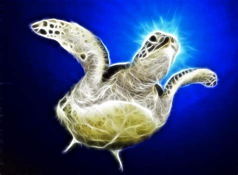 Sea Turtle Animated Wallpaper - sea turtle animated wallpaper torrent 1337x