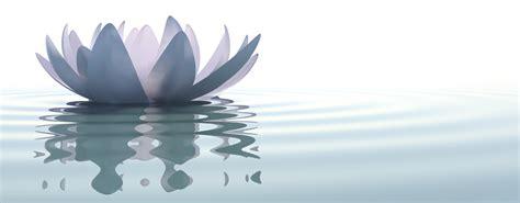 light blue flowers 8 meditation mistakes to avoid
