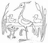 Stork Coloring Coloringtop sketch template