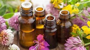 Homeopath Wiltshire - Holistic Health Clinic & Homeopathy in Hampshire, London & Salisbury Homeopathy
