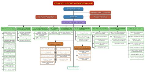 au organization chart assumption university