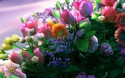 Flowers Flower Desktop Wallpapers Background Bouquets Rose