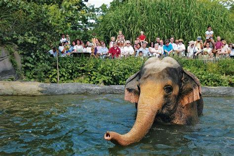 zoo zoos cincinnati animals usa elephant omaha st travel louis visit 10best awards diego san puffins courtesy columbus