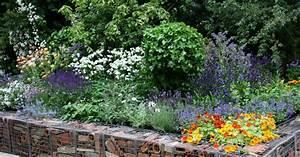 Gabionen Gartengestaltung Bilder : gartengestaltung mit gabionen ideen und materialien mein sch ner garten ~ Eleganceandgraceweddings.com Haus und Dekorationen