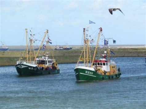 Vissersbootjes Te Koop by Op Stap In Hollands Kroon
