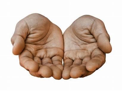 Hands Palm Receiving Receive Open Gesture Pixabay