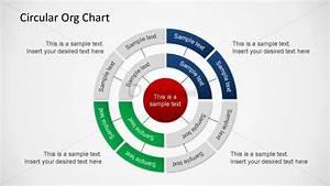Three Layer Circular Org Chart Powerpoint Shapes