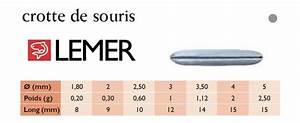 Crottes De Souris : plomb crottes de souris 30 gr ~ Melissatoandfro.com Idées de Décoration