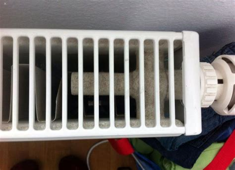 heizkörper gitter entfernen heizk 246 rper reinigen beste tipps tricks wohnng
