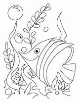 Coloring Rush Gold Pages Vk Marina Getcolorings Lopatina Fish Printable Salvo sketch template