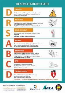 Free, Resuscitation, Chart, U2013, Safety, Posters