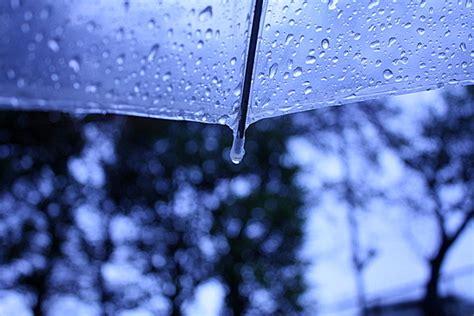 雨 写真 に対する画像結果