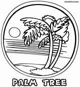 Palm Coloring Tree Pages Printable Pretty Print Palmtree Colorings Heaven Birijus sketch template