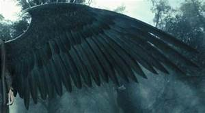DIY ideas for crafting Maleficent's Magnificent Wings from ...