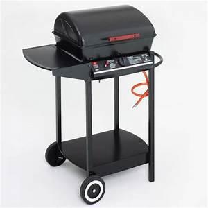 Barbecue A Gaz Pas Cher : barbecue gaz landmann achat vente barbecue gaz ~ Dailycaller-alerts.com Idées de Décoration