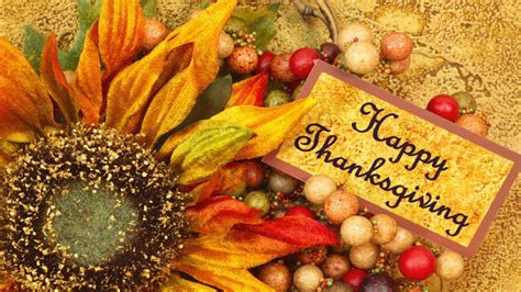 thanksgiving day   hd thanksgiving wallpapers