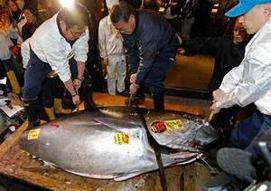 Photo: Bluefin tuna sells for record $1.76 million in Japan