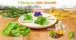 Herbs for baldness