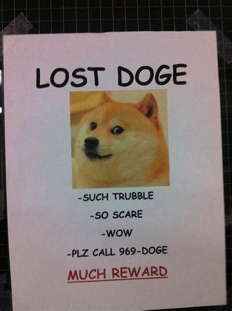 So Doge Meme - lost doge lost doge and haha