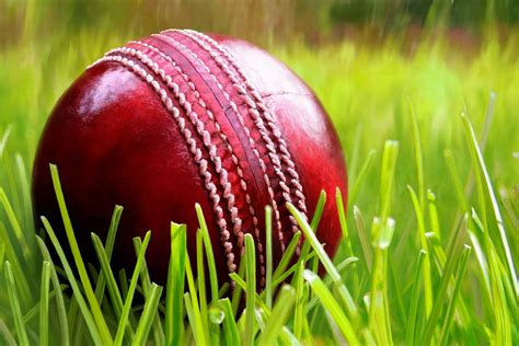 Cricket Images Cricket Images Pictures Photos Hd Wallpapers