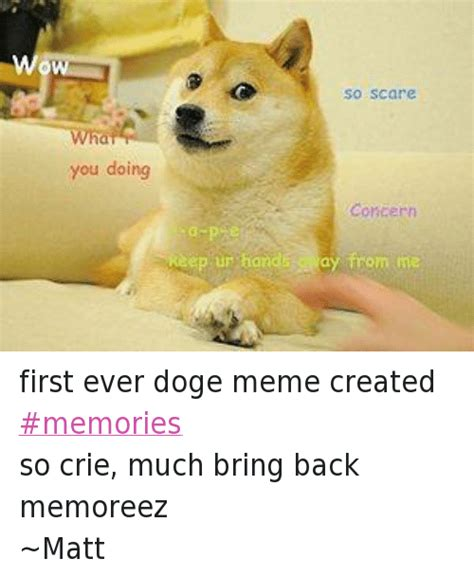 Make A Doge Meme - you doing so scare concern keep ur hand ay from me first ever doge meme created memories so