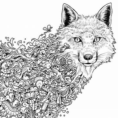 Coloring Extreme Pages Adult Fox Getdrawings Printable