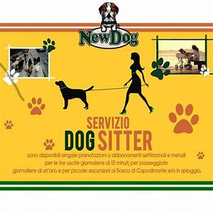Taxi dog dog sitter newdog beauty center for Puppy dog sitter