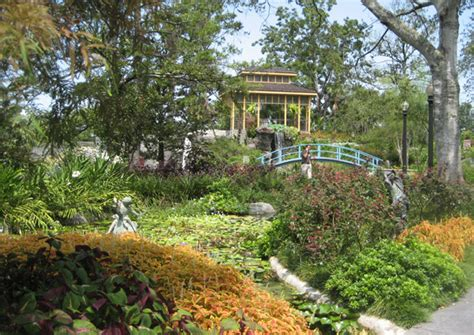 Lose yourself in the tranquility of Cohn Arboretum
