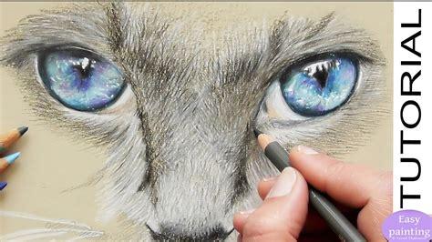 draw realistic cat eyes  polychromos step