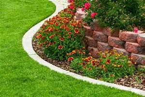 Edging, Plants, Or, Border, Plants, For, Garden