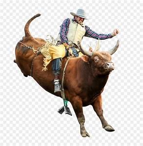 Bull Riding Professional Bull Riders Rodeo Bucking Bull