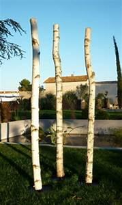 Achat Tronc Arbre Decoratif : tronc de bouleau achat vente de troncs de bouleaux ~ Zukunftsfamilie.com Idées de Décoration