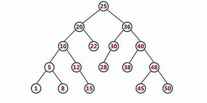 Binary Tree Java Contoh Program Pada Gambar