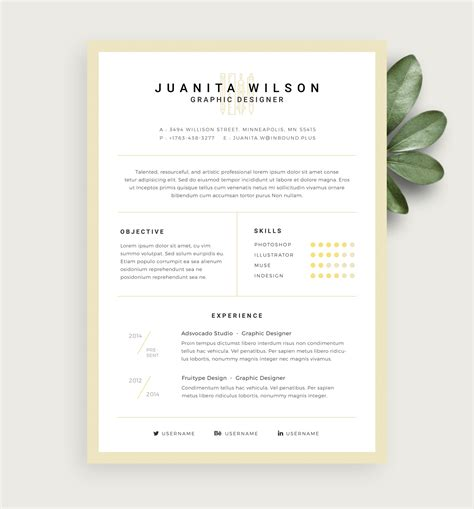 Sle Cleaner Resume by Clean Resume Template Template Business