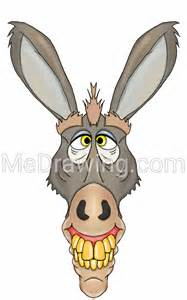 Donkey Cartoon Drawing