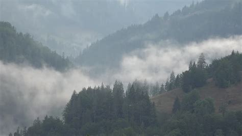 Misty Time Lapse Clouds Blanket A Pine Tree Forest And