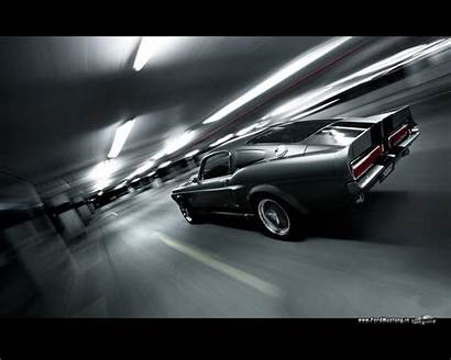 Gt500 Shelby Ford Mustang Eleanor Cars Wallpapers