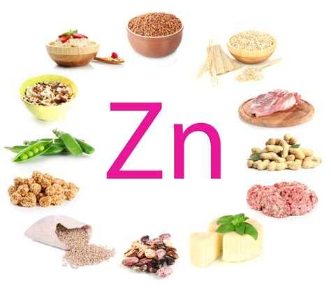 zinc supports male female fertility article video