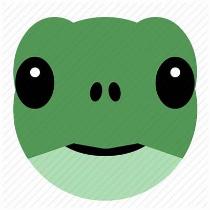 Turtle Face Tortoise Icon Animal Reptile Pet
